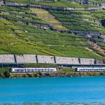 Croisement de deux rames FLIRT devant Lavaux, vues du M/S Lausanne en course 201